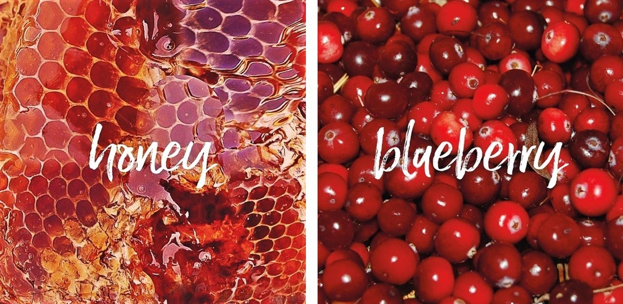 honey_and_blueberries