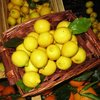 Sicilian local Lemon