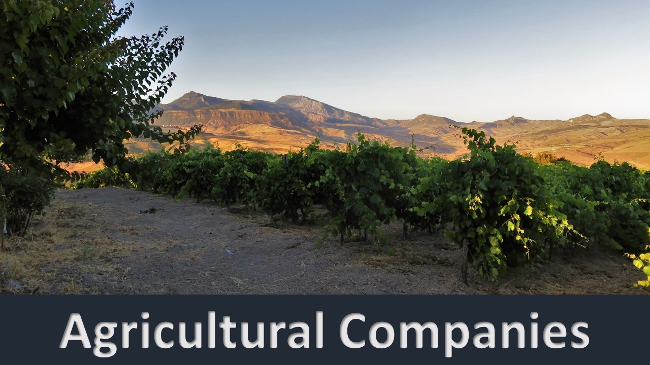 agricultural_companies